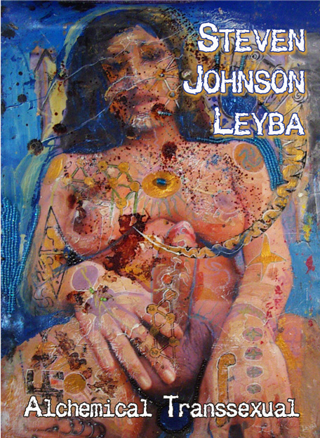 200909steven johnson leyba3